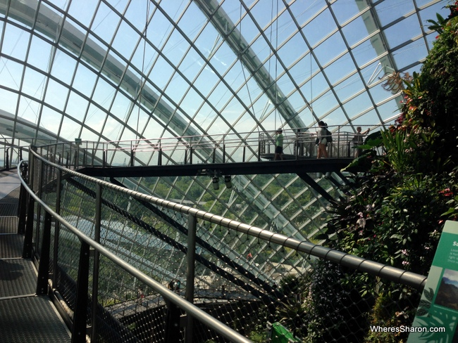 things to do in singapore for children at Gardens on the Bay