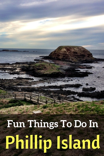 fun things to do in Phillip Island