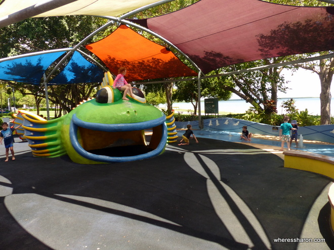 family things to do in cairns at muddys playground