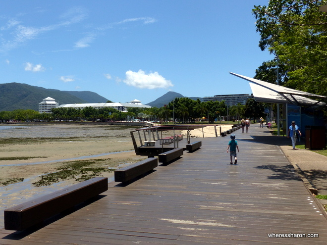 what to do in cairns australia