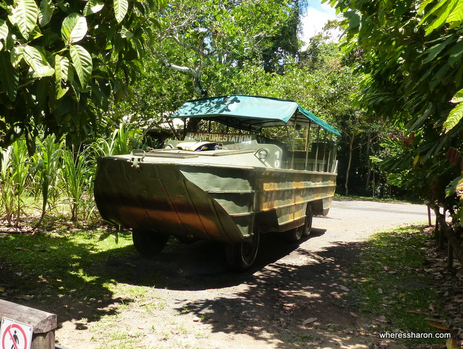Rainforestation Wildlife Park cairns army duck