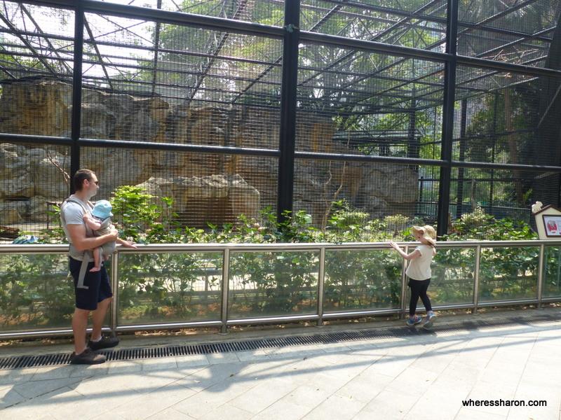 hong kong things to do family parks