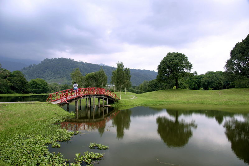 The picturesque Taiping Lake Gardens.