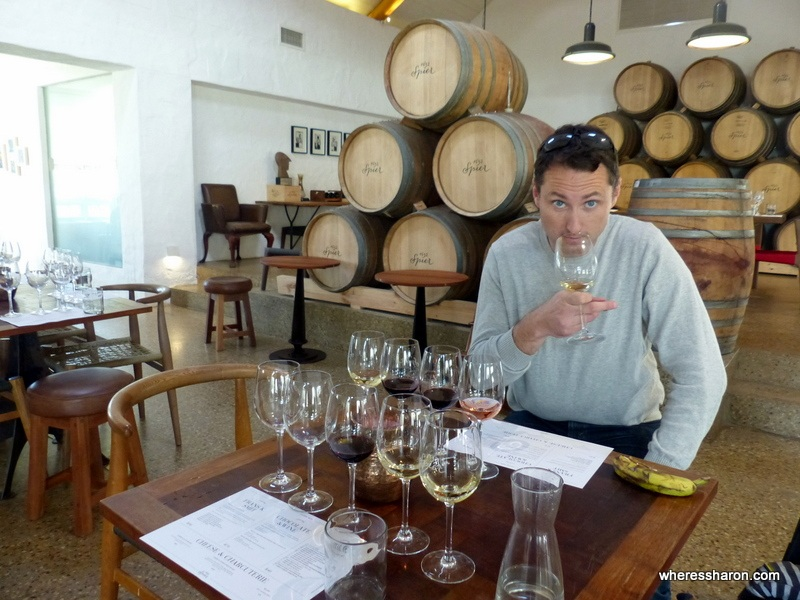Spier winery things to do cape town kids