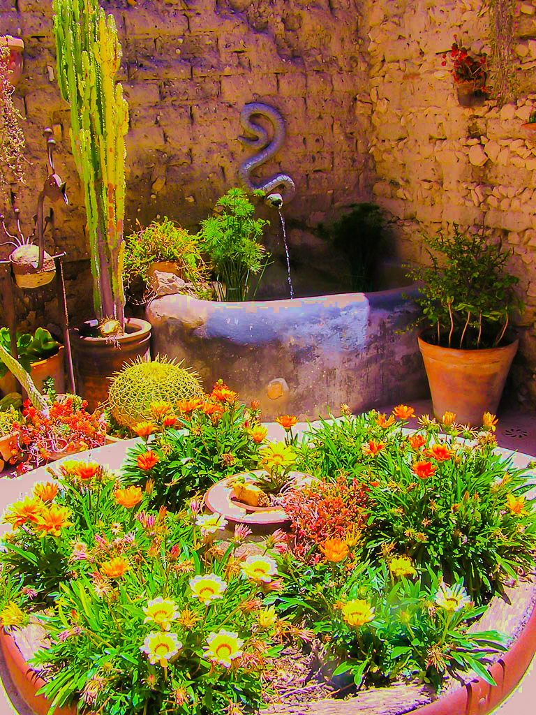 The outdoor scene provides a graceful setting for art, botany and relaxation in the state of Guanajuato, Mexico.