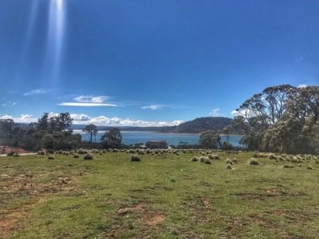 The Great Lake (Miena)