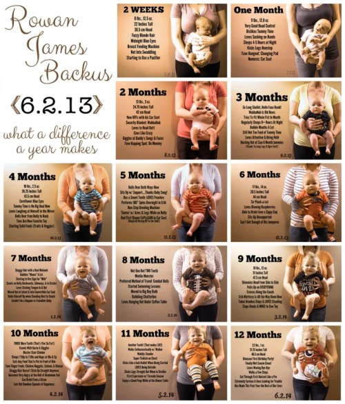 Baby Monthly Photos with Stats