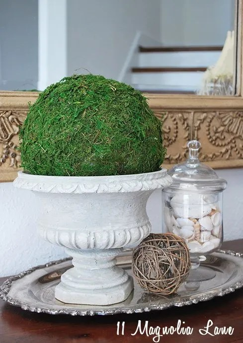 Potted Moss Topiary