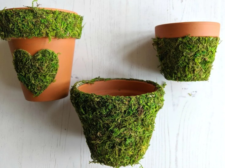 Decorated Pots With Moss Designs