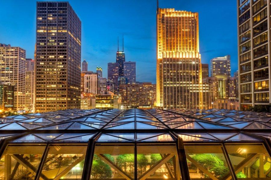 Blue Hour Chicago William Woodward