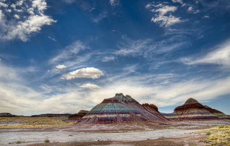 Petrified Forest Arizona William Woodward