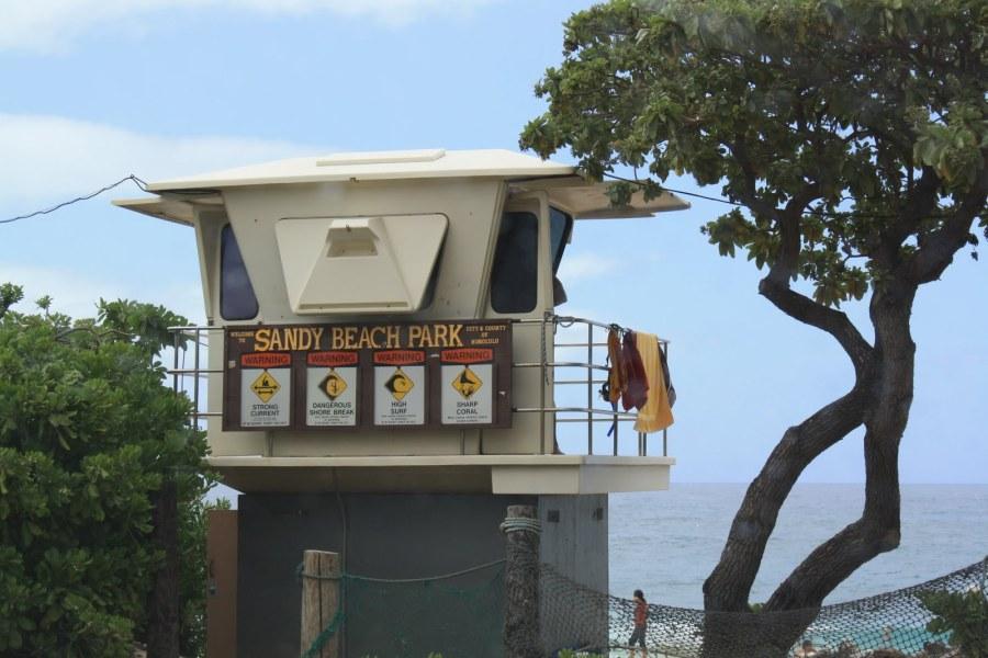 Hawaiian job search