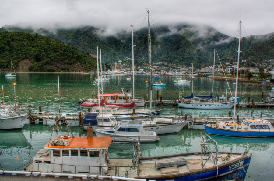 Picton Harbour NZ William Woodward