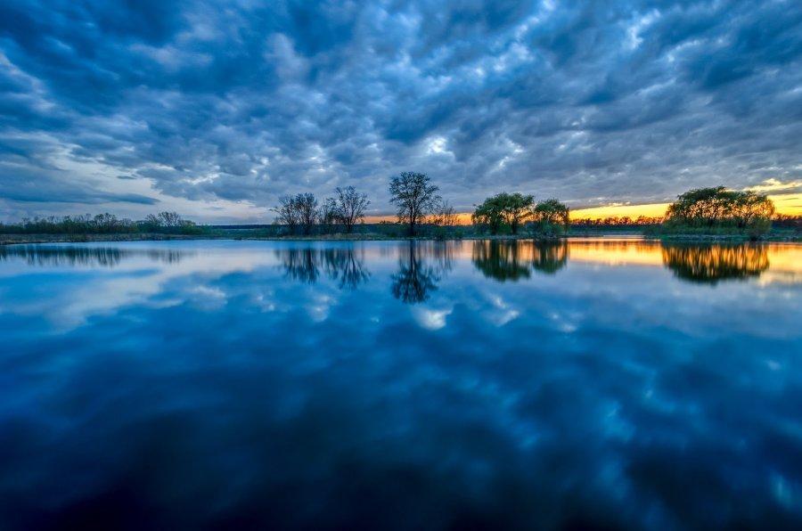 Silk Reflections Illinois William Woodward