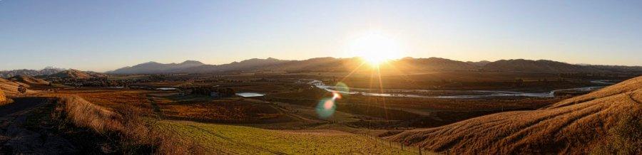 Wine Valley NZ William Woodward