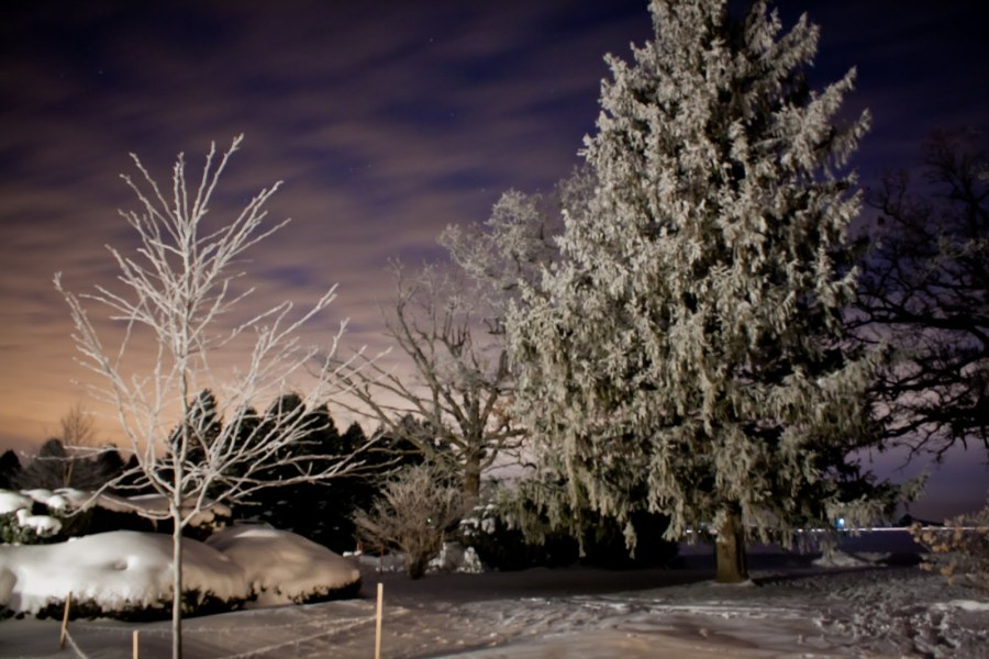Late into Winter Night Illinois William Woodward