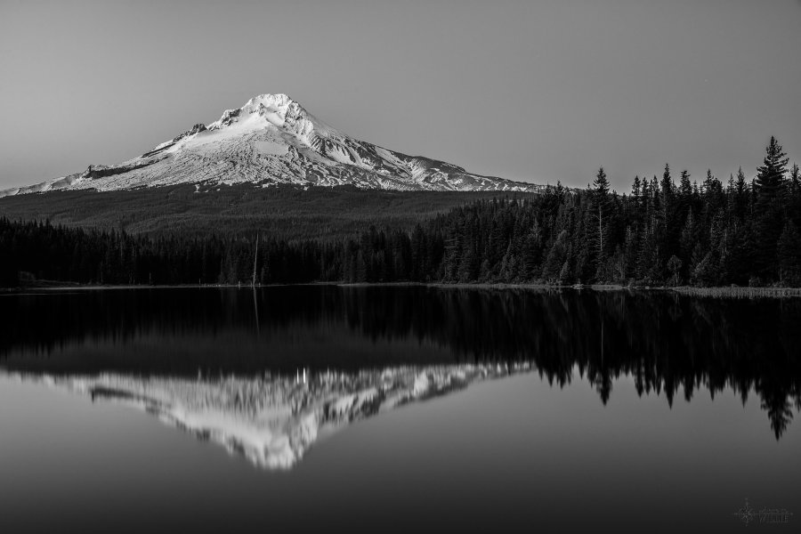 Trillium Lake Reflection William Woodward
