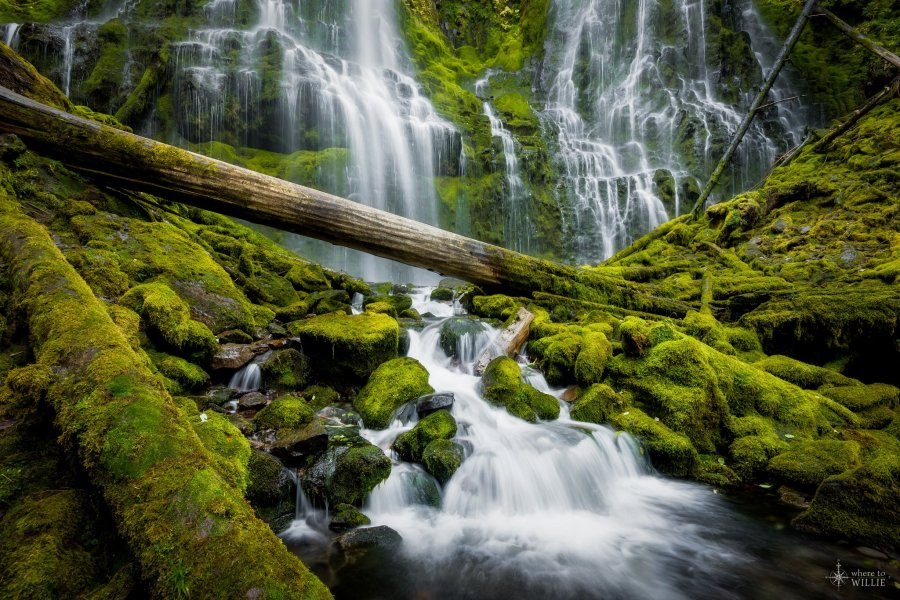 proxy falls waterfall william woodward