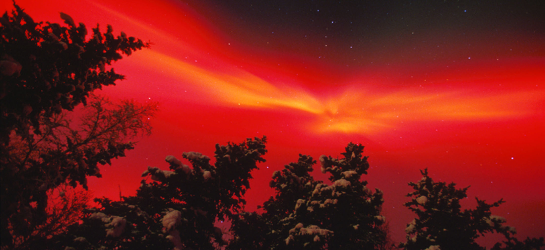 Twin Cities Northern Lights