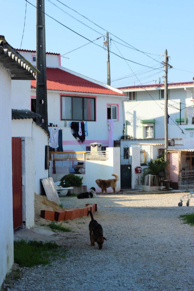 Sheer bliss in a Portuguese fishermen's village: Cova do Vapor