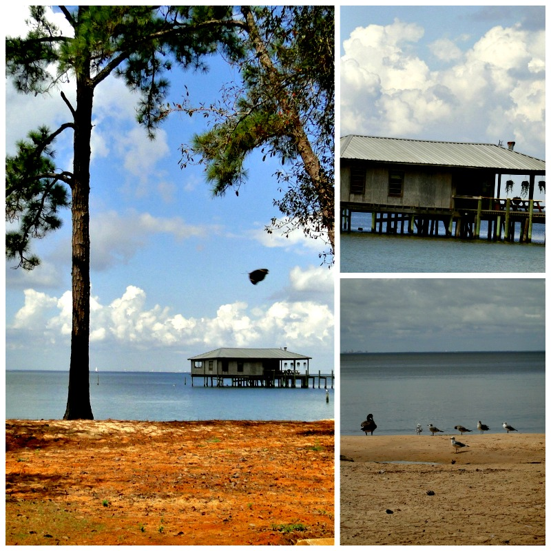 fairhope waterfront