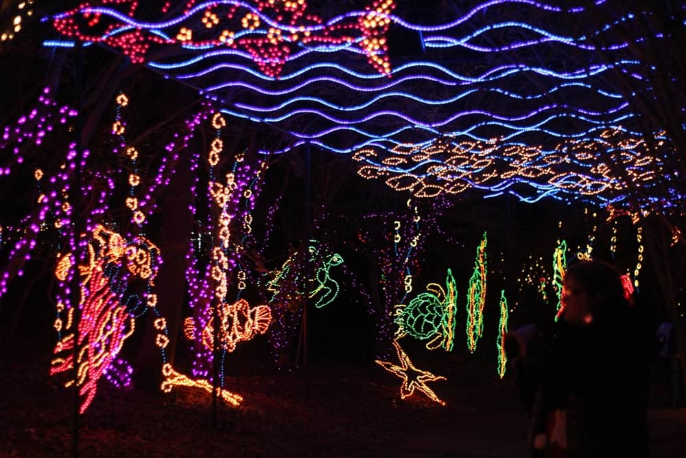 Christmas Lights at Bellingrath Gardens Alabama The Wherever Writer