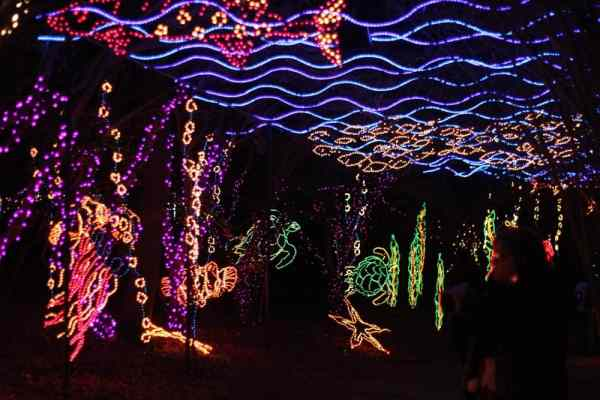 Christmas lights in a sea theme
