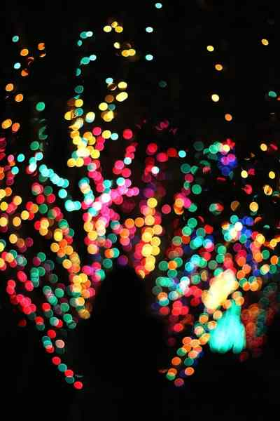 Multi-colored tree of lights and silhouette of a woman