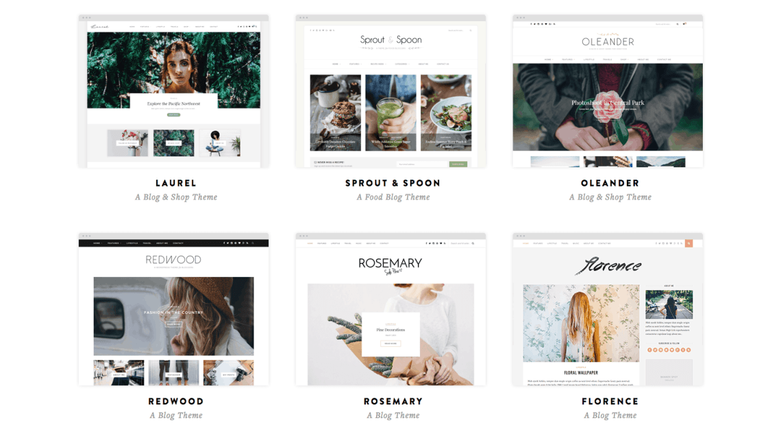 SoloPine WordPress themes