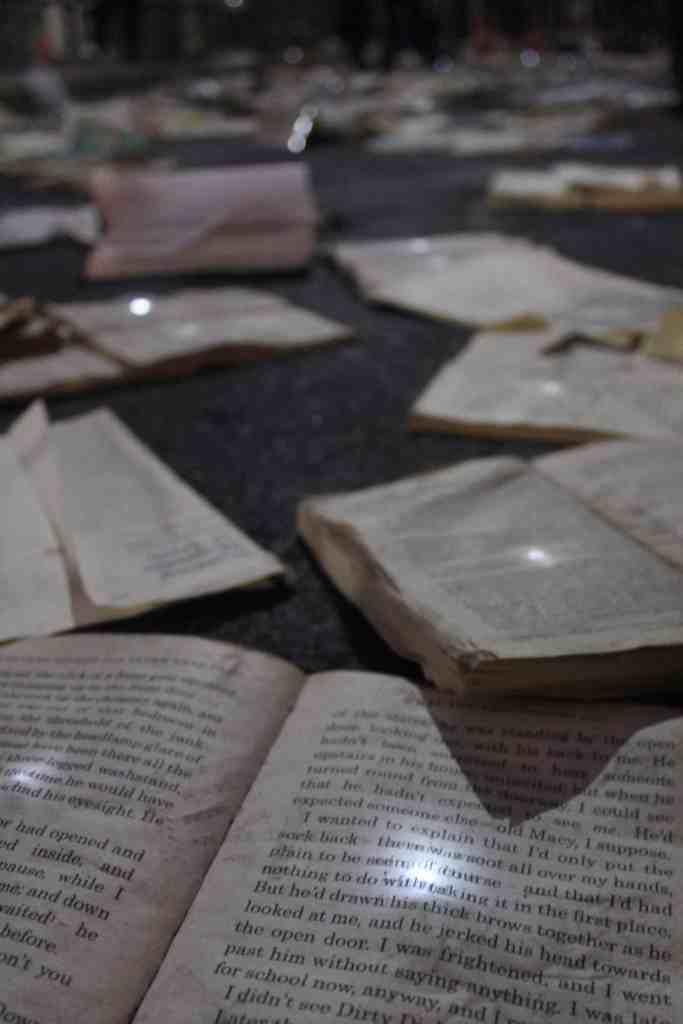 Nuit Blanche Toronto - Books in the street exhibit Literature vs. Traffic