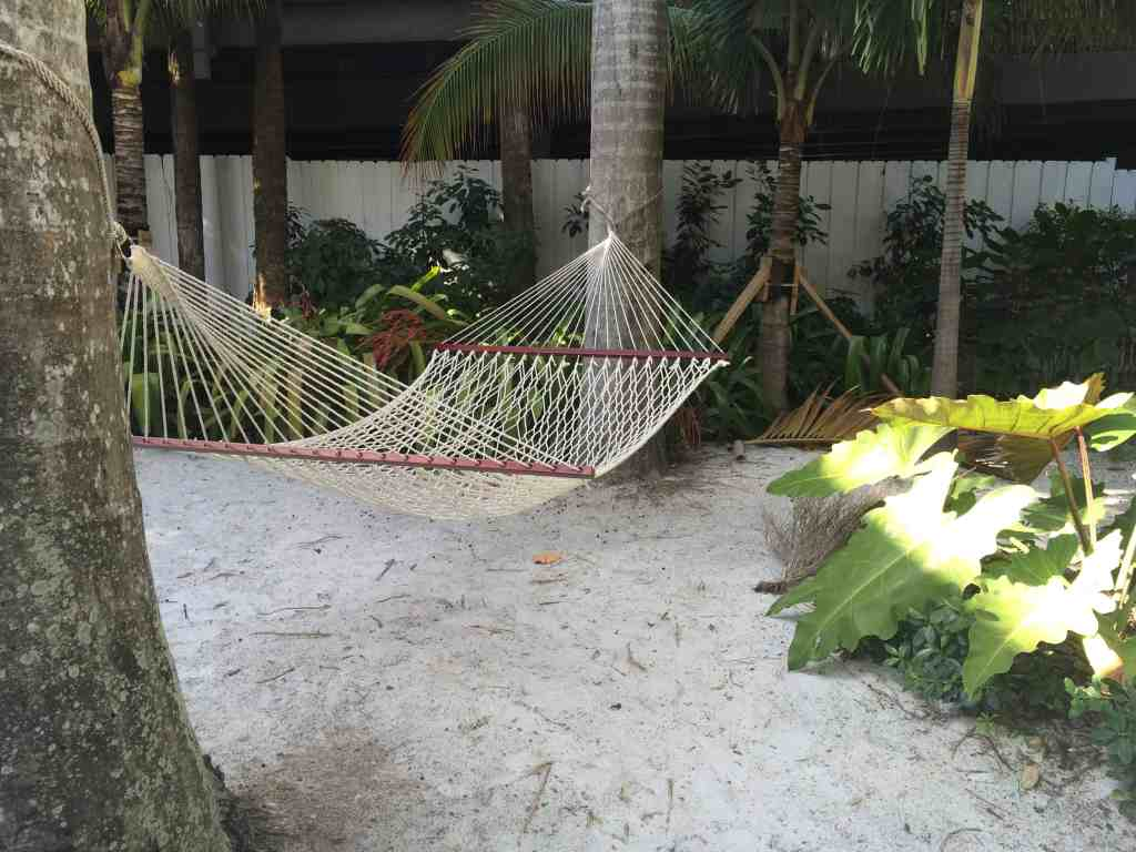 Roam Coliving Miami - Hammock