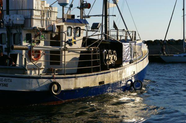 Maritime, Fisheries and Aquaculture