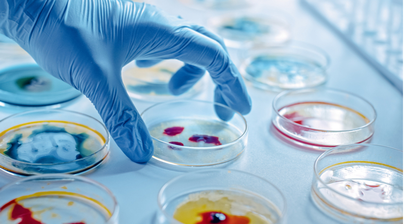 Microbiology Courses