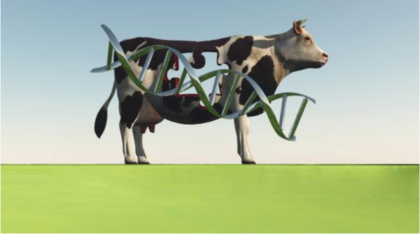 Animal Biotechnology Courses