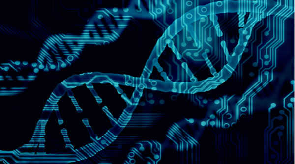 Bioinformatics and Computational Biology Courses