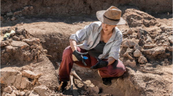 Archaeology Courses