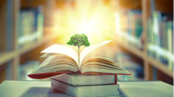 Environmental History Courses