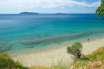 Ftelia Beach Skiathos
