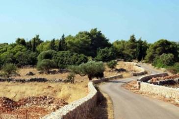 Agios Leon Zakynthos