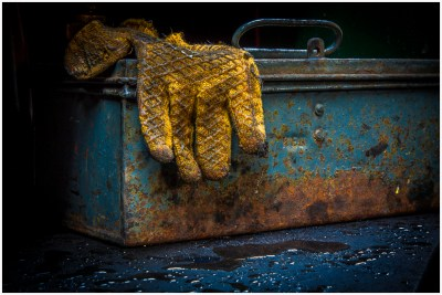 The Glove - Peter Dixon