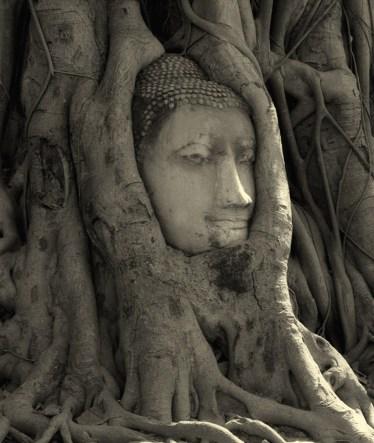 Thailand Head of Buddha