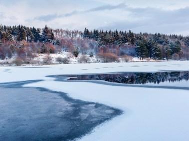 Cod Beck winter