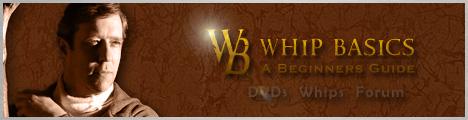 Whip Basics - A Beginners Guide