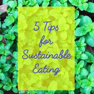 5 Tips for Sustainable Eating
