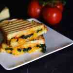 CHEESY BACON SPINACH PANINI