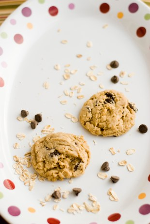 Peanut Butter Chocolate Chip Oatmeal Cookie