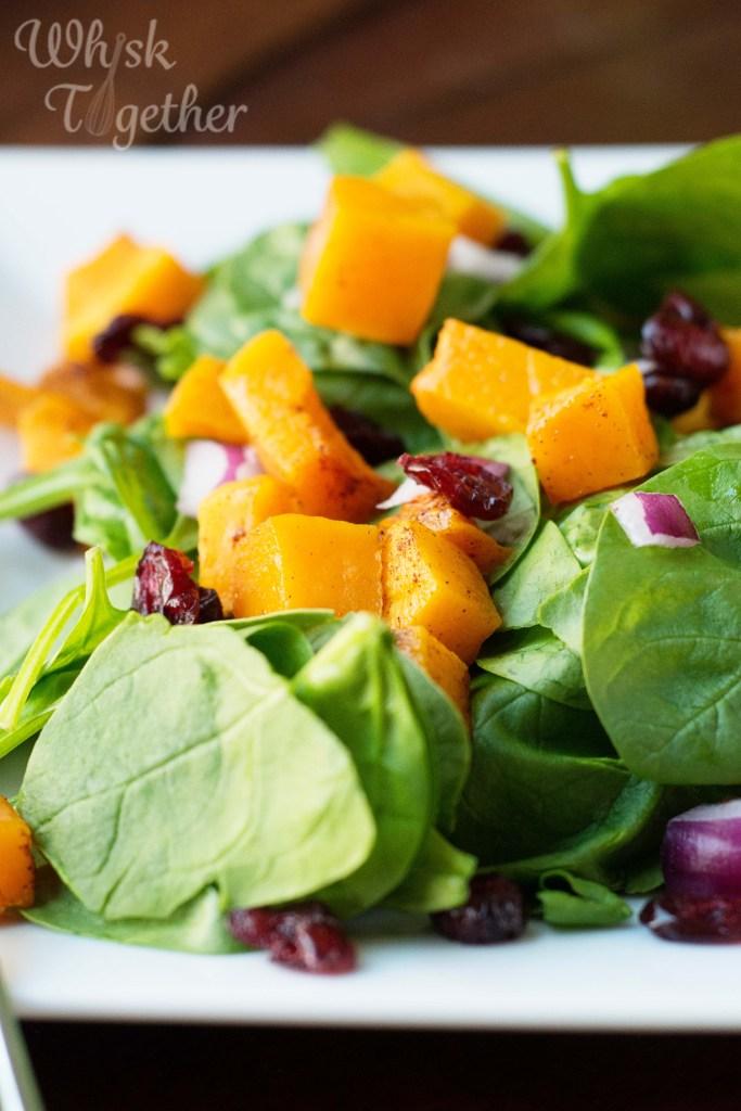 Butternut Squash Salad on Whisk Together-5529
