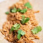 Super Fast (NO Forks!) Shredded Chicken | Instant Pot