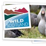 Wild Scotland (c) wild-scotland.co.uk