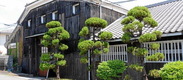 Sake-Produktion bei White Oak